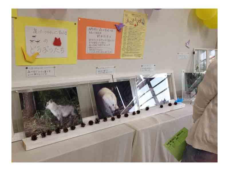仙台市立高森小学校 ひばり祭2017